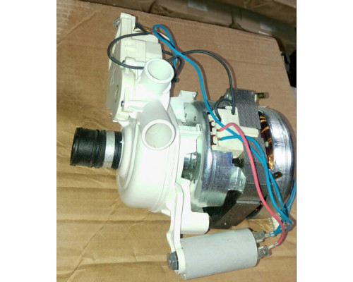 WASH MOTOR/PUMP V220 60W-P20 NPE...