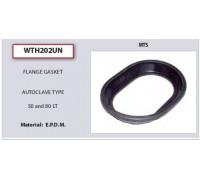Прокладки / манжеты для водонагревателя (овал 50 and 80 LT), ARISTON WTH202UN